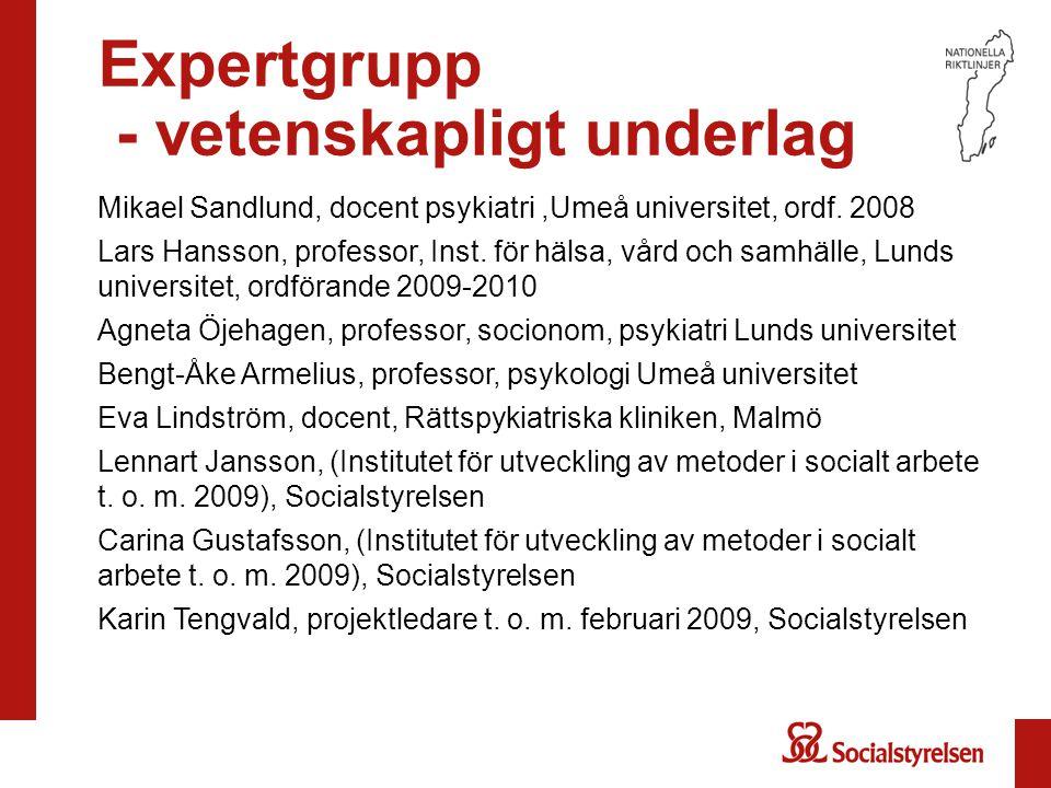 Expertgrupp - vetenskapligt underlag