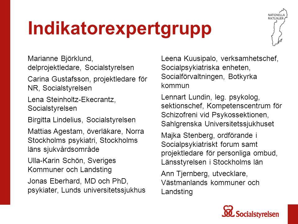Indikatorexpertgrupp