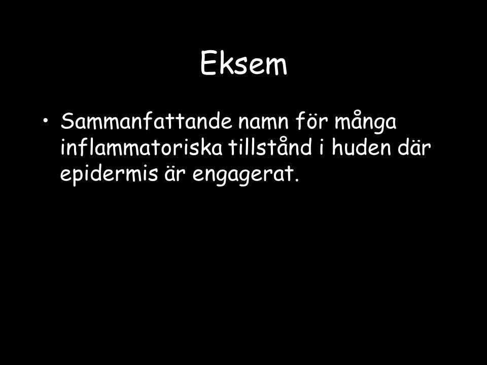 Eksem Sammanfattande namn för många inflammatoriska tillstånd i huden där epidermis är engagerat.