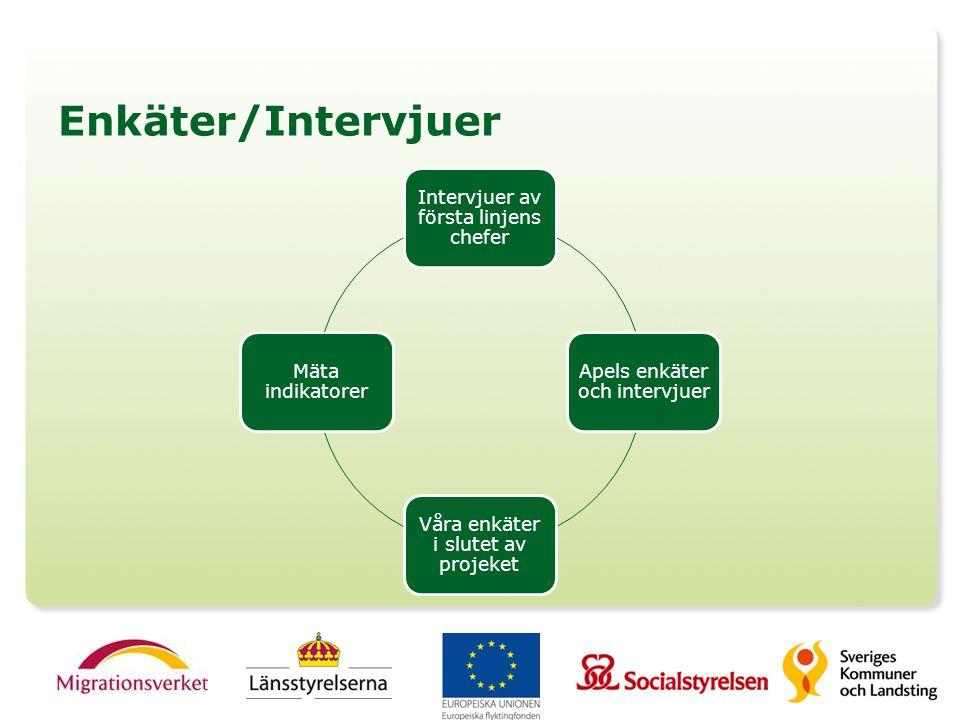 Enkäter/Intervjuer Intervjuer av första linjens chefer