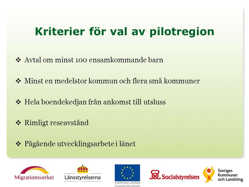 Kriterier för val av pilotregion