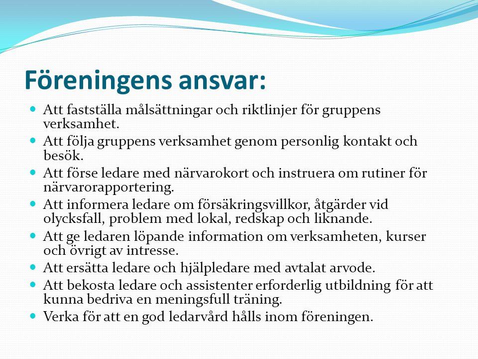 Föreningens ansvar: Att fastställa målsättningar och riktlinjer för gruppens verksamhet.