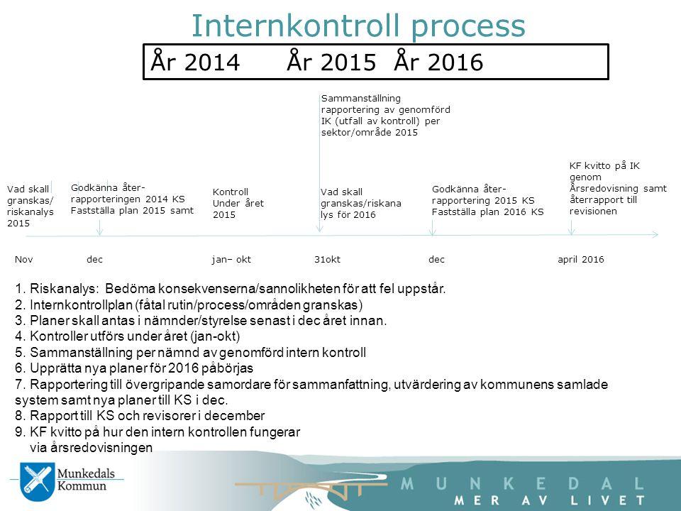 Internkontroll process