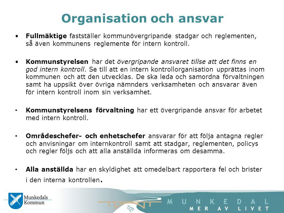 Organisation och ansvar