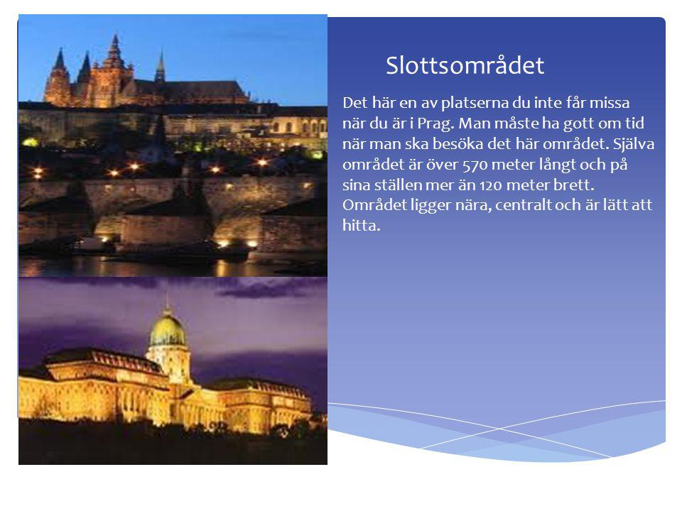 Slottsområdet