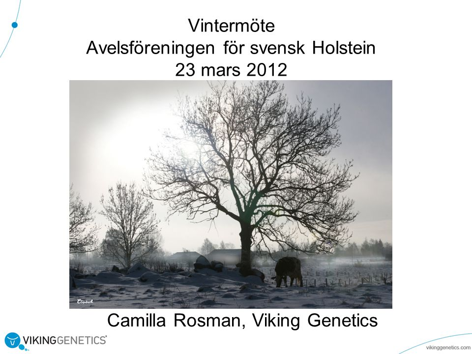 Vintermöte Avelsföreningen för svensk Holstein 23 mars 2012