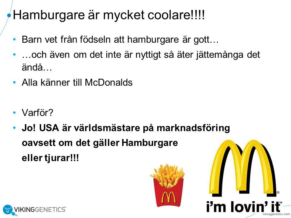 Hamburgare är mycket coolare!!!!