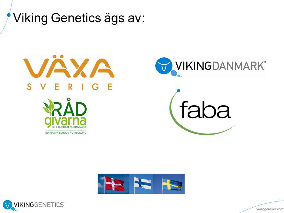 Viking Genetics ägs av: