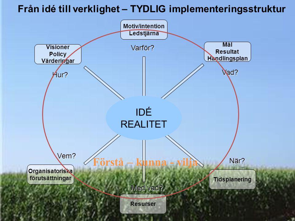 Från idé till verklighet – TYDLIG implementeringsstruktur