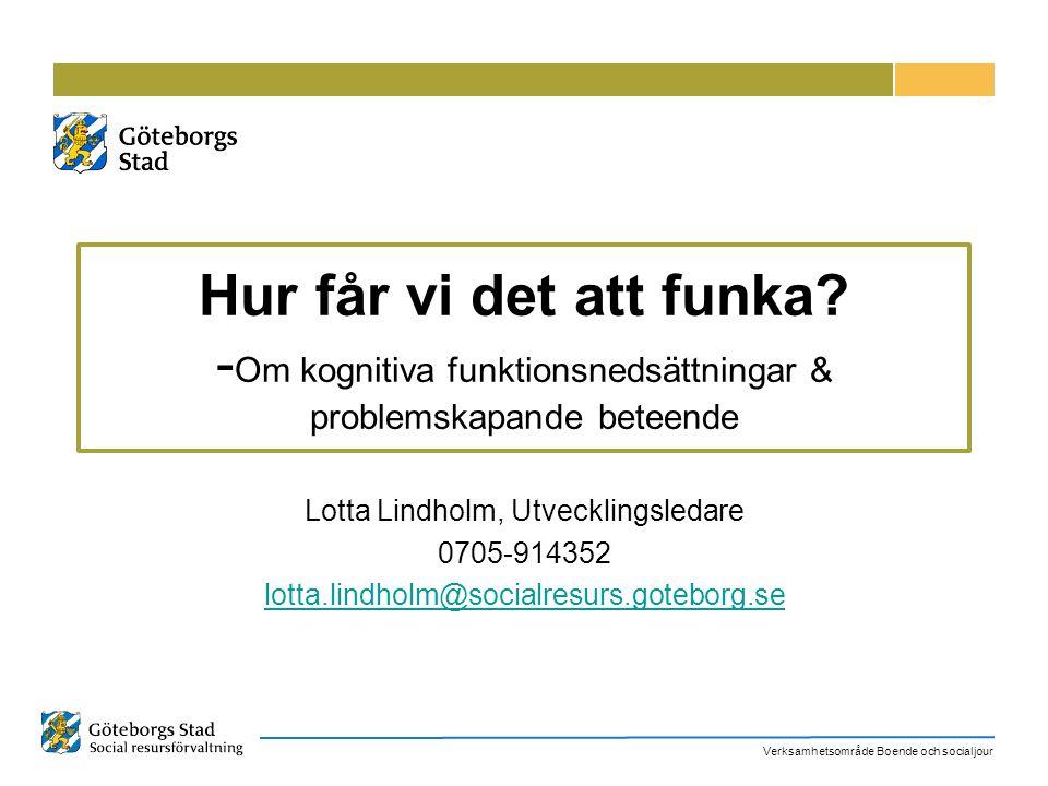 Lotta Lindholm, Utvecklingsledare
