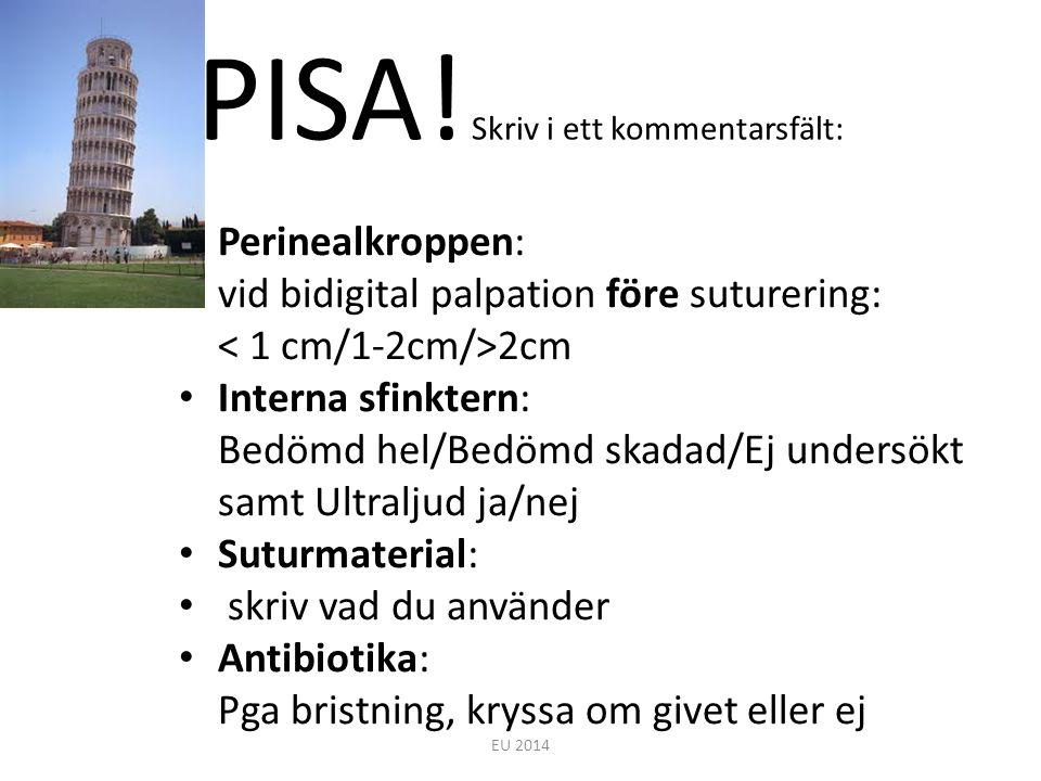 PISA! Skriv i ett kommentarsfält: