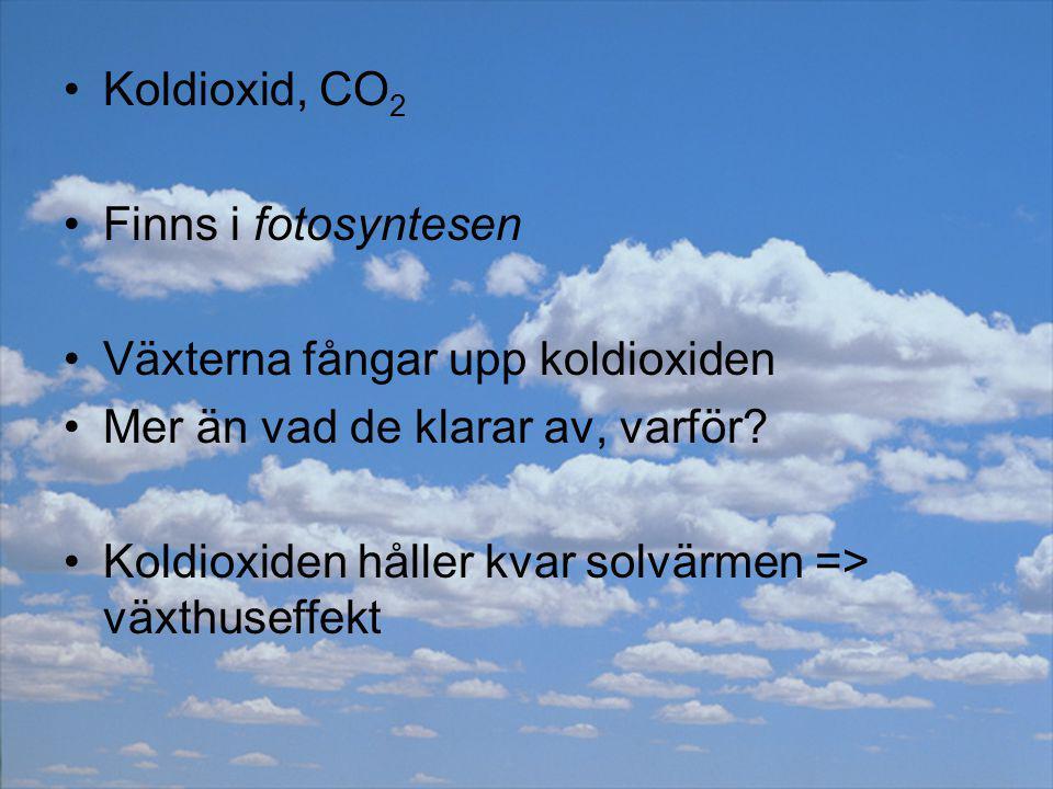 Koldioxid, CO2 Finns i fotosyntesen. Växterna fångar upp koldioxiden. Mer än vad de klarar av, varför
