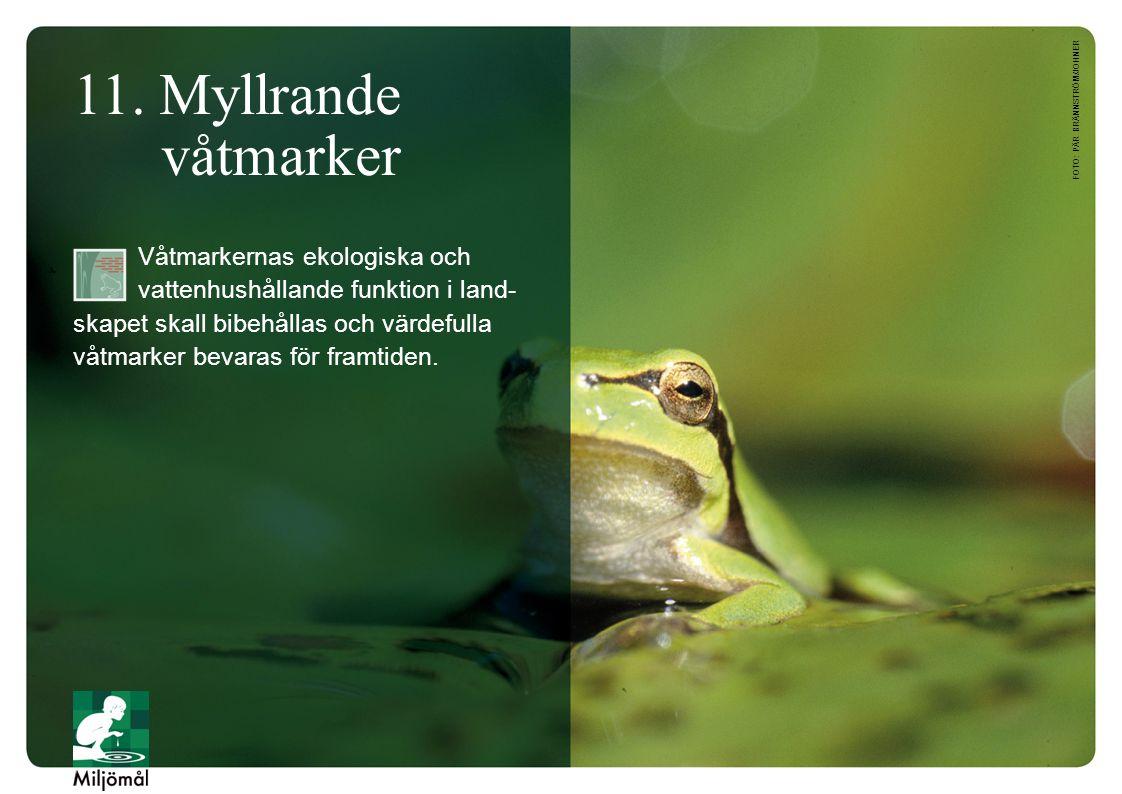 foto: Pär Brännström/JOHNER