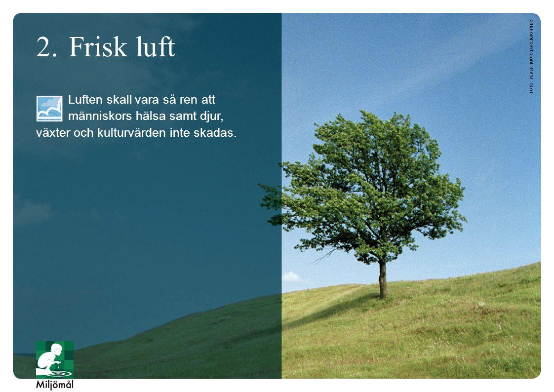 2. Frisk luft foto: Peder Björkegren/JOHNER.