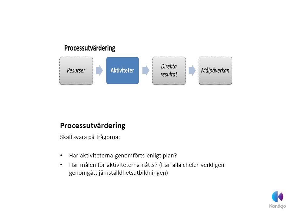 Processutvärdering Skall svara på frågorna: