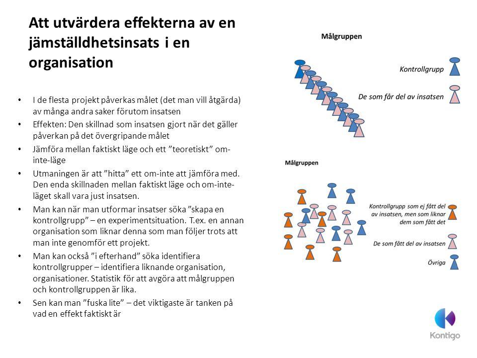 Att utvärdera effekterna av en jämställdhetsinsats i en organisation