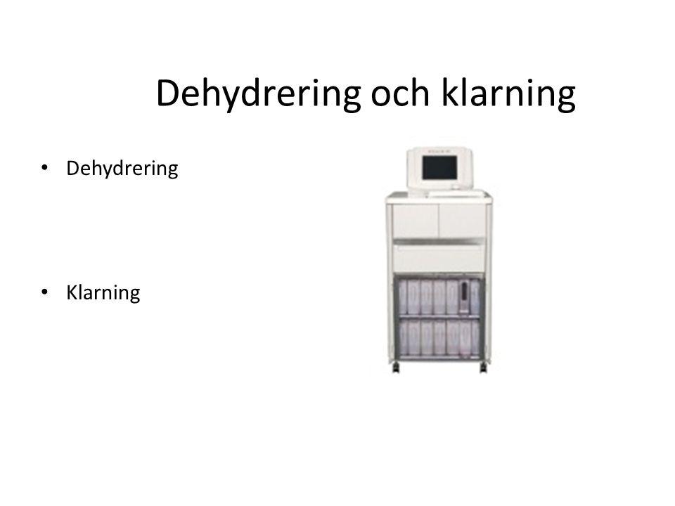 Dehydrering och klarning