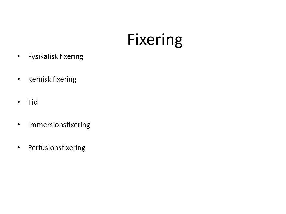 Fixering Fysikalisk fixering Kemisk fixering Tid Immersionsfixering