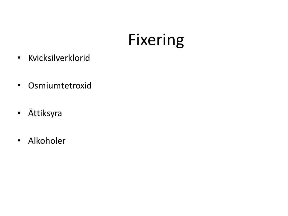 Fixering Kvicksilverklorid Osmiumtetroxid Ättiksyra Alkoholer