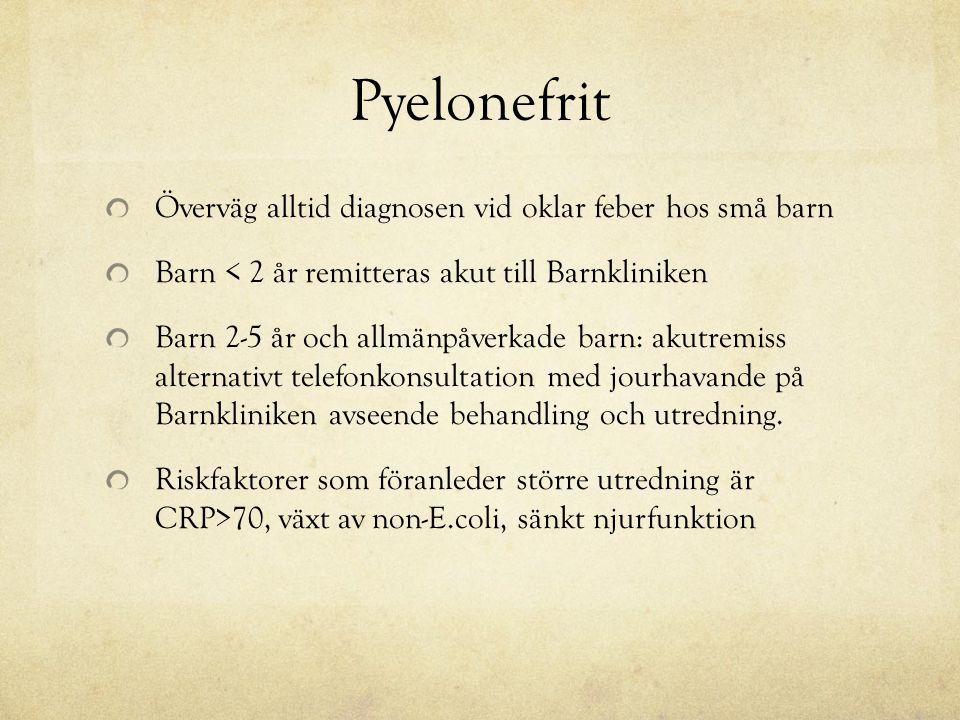 Pyelonefrit Överväg alltid diagnosen vid oklar feber hos små barn