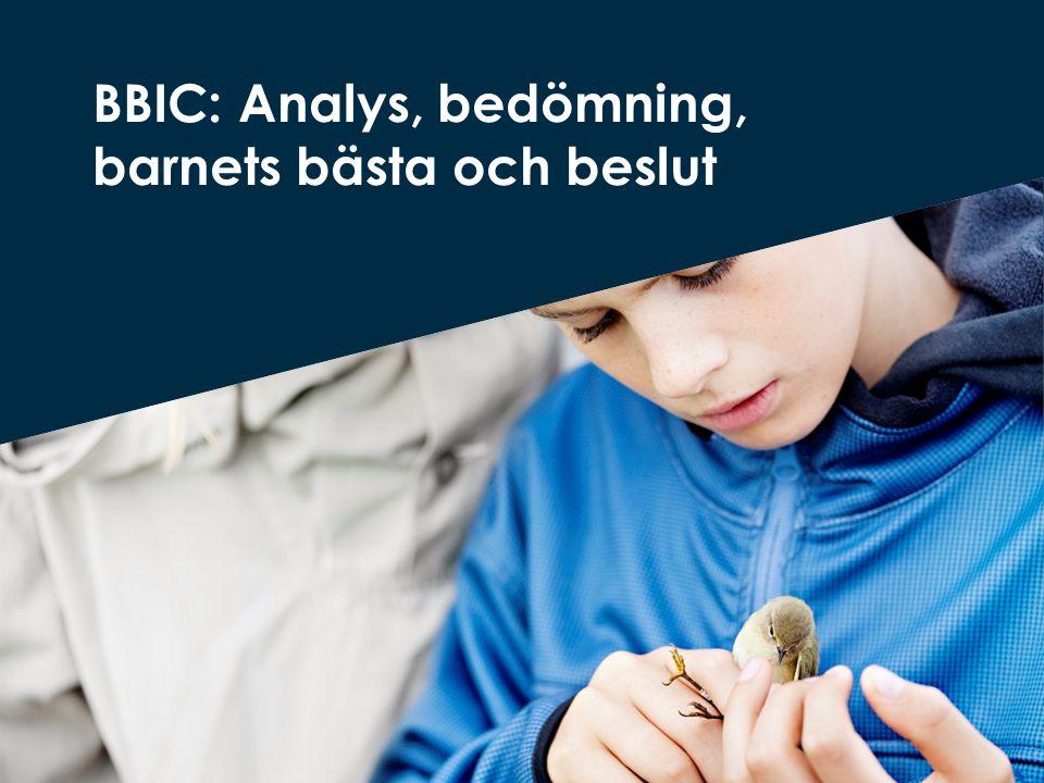 BBIC: Analys, bedömning, barnets bästa och beslut