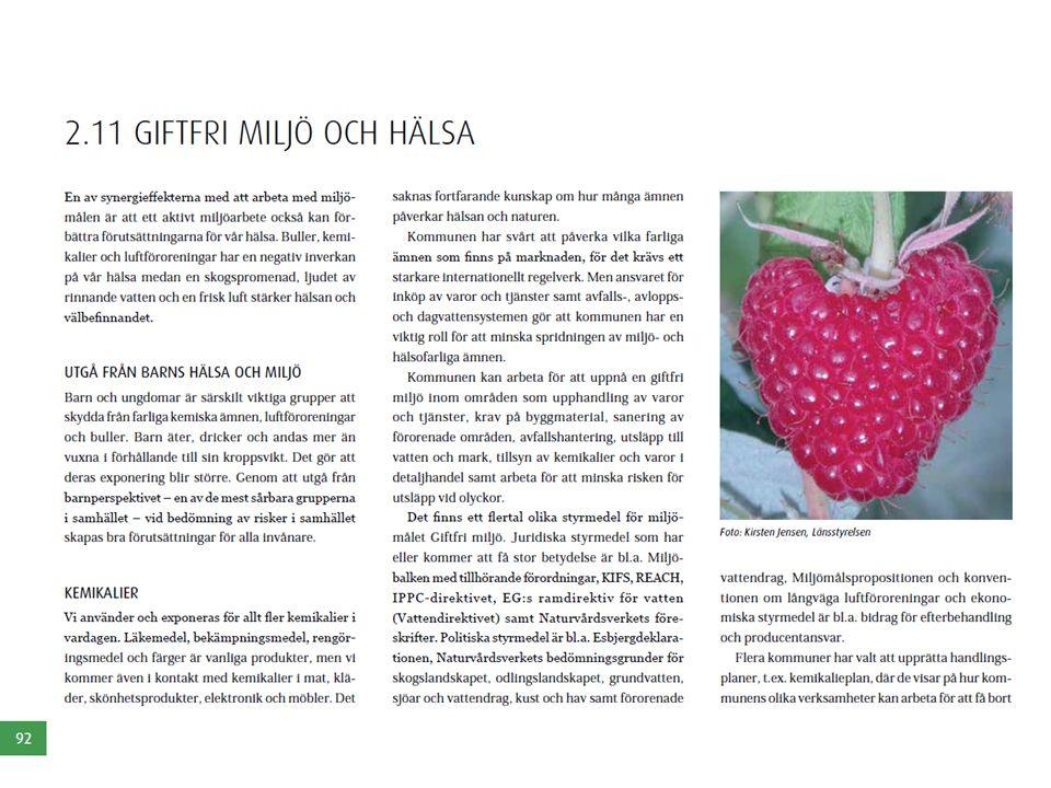 I kapitlet Giftfri miljö och hälsa beskriver vi vikten av att utgå från barns hälsa och miljö vid bedömningen av risker i samhället.