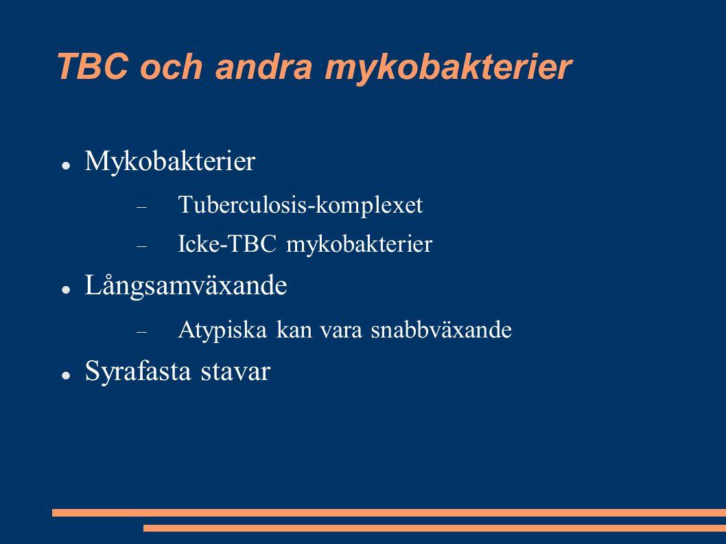 TBC och andra mykobakterier