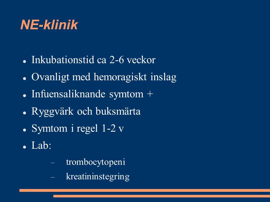NE-klinik Inkubationstid ca 2-6 veckor Ovanligt med hemoragiskt inslag
