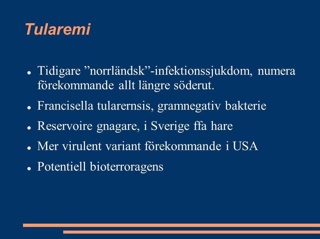 Tularemi Tidigare norrländsk -infektionssjukdom, numera förekommande allt längre söderut. Francisella tularernsis, gramnegativ bakterie.
