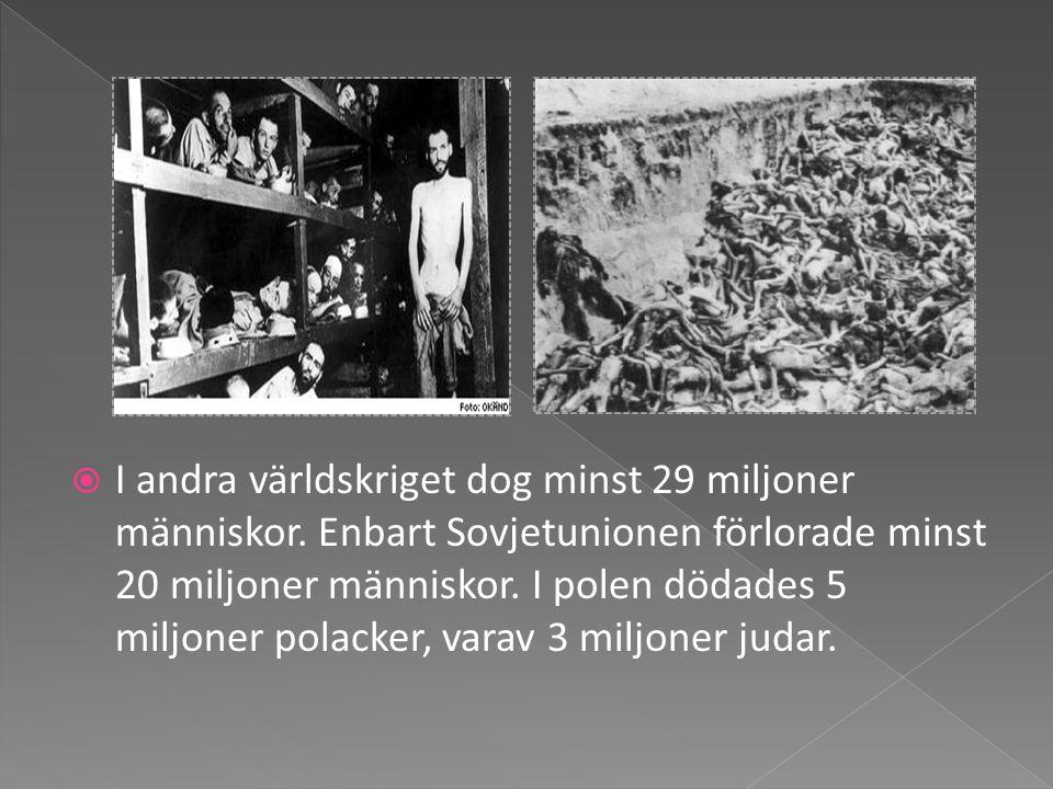 I andra världskriget dog minst 29 miljoner människor