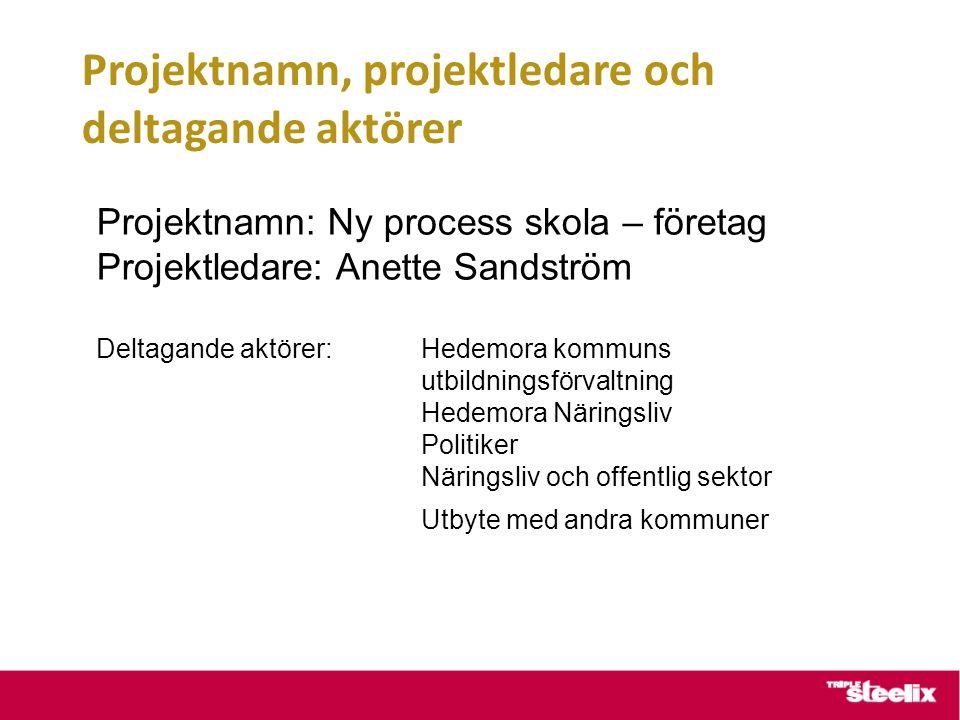 Projektnamn, projektledare och deltagande aktörer
