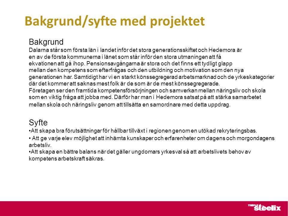 Bakgrund/syfte med projektet