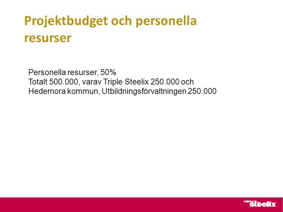 Projektbudget och personella resurser