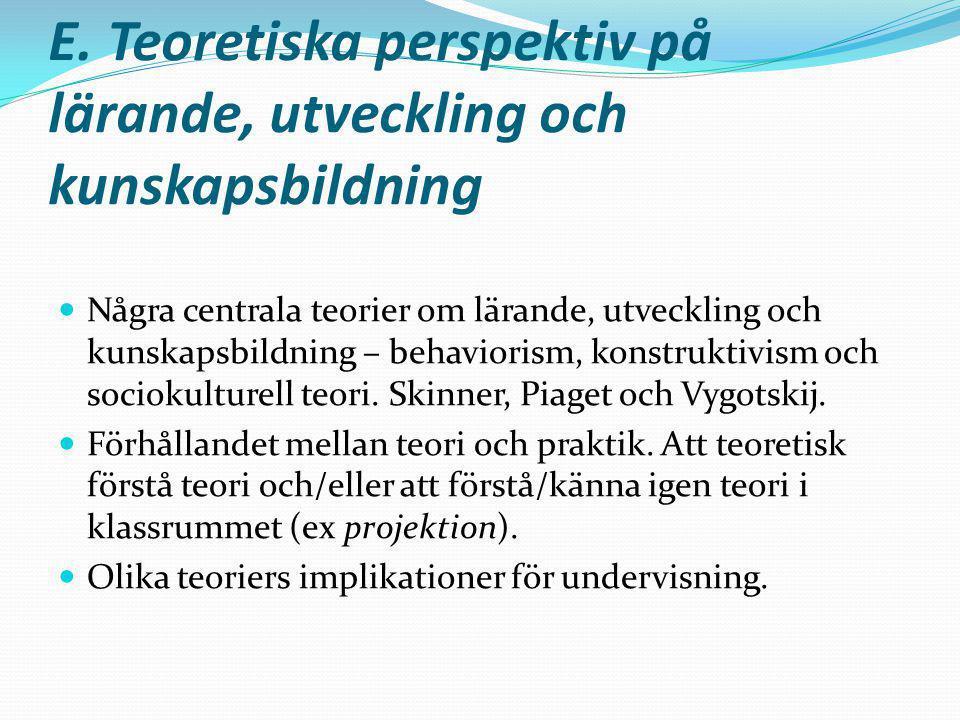 E. Teoretiska perspektiv på lärande, utveckling och kunskapsbildning