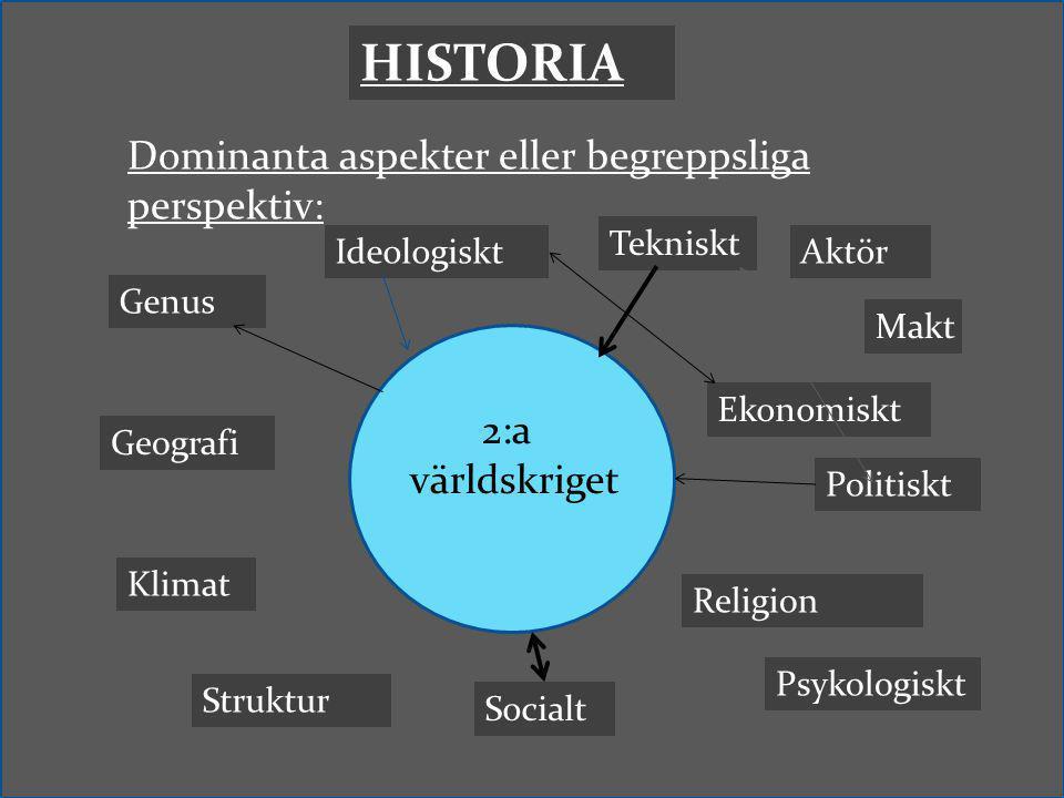 HISTORIA Dominanta aspekter eller begreppsliga perspektiv: