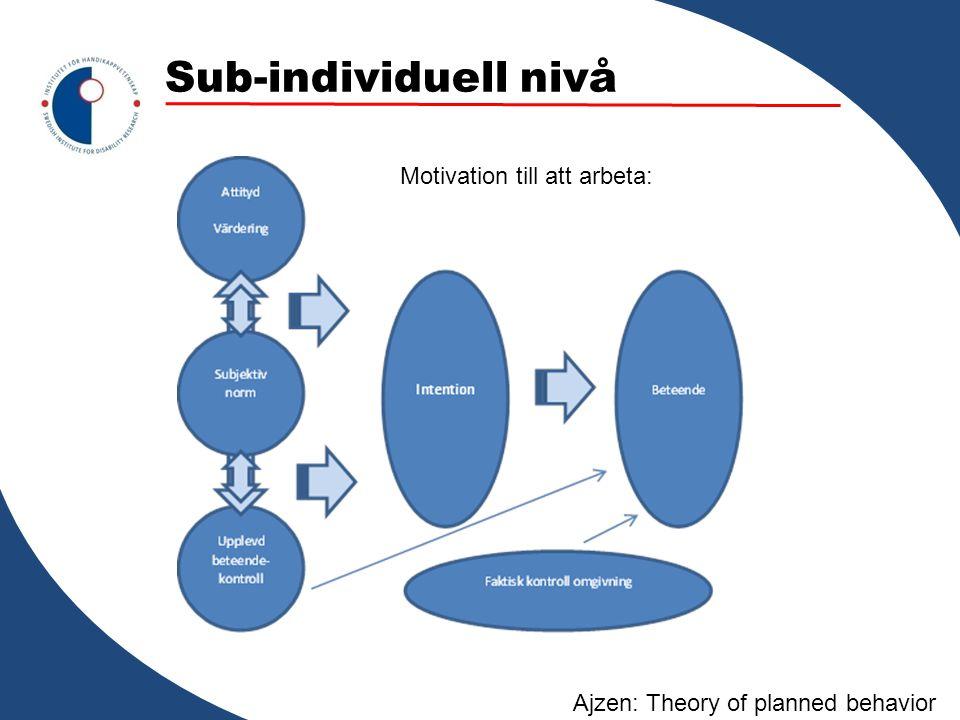 Sub-individuell nivå Motivation till att arbeta: