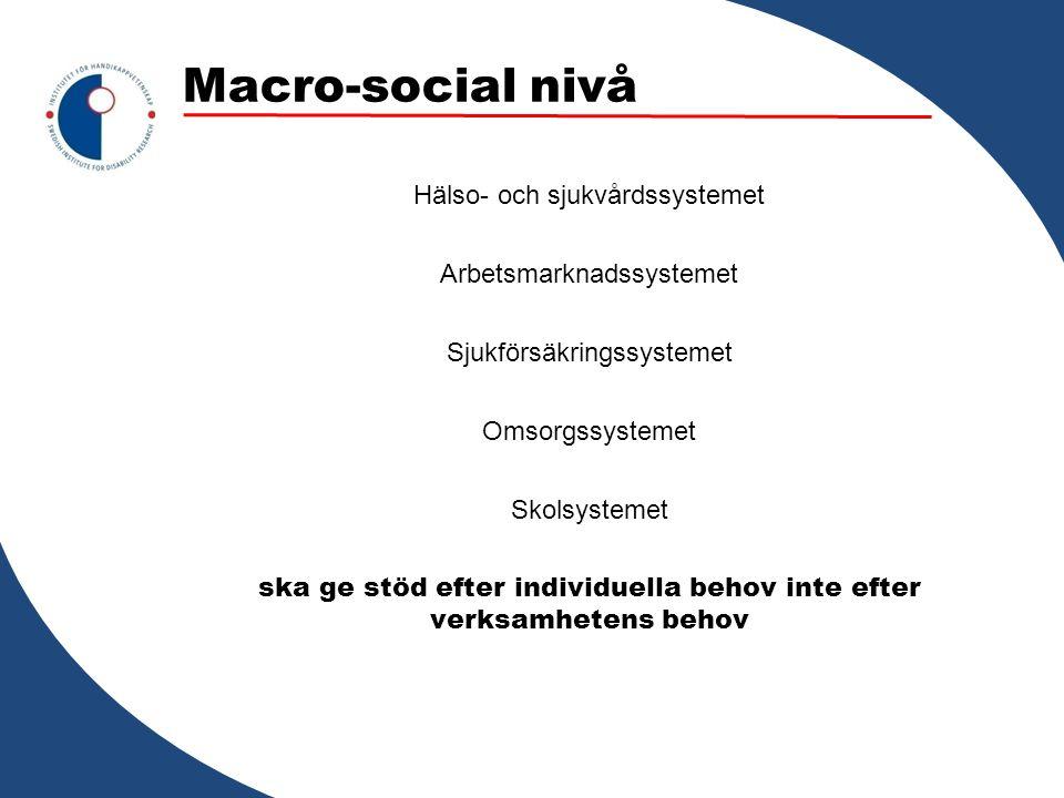 Macro-social nivå