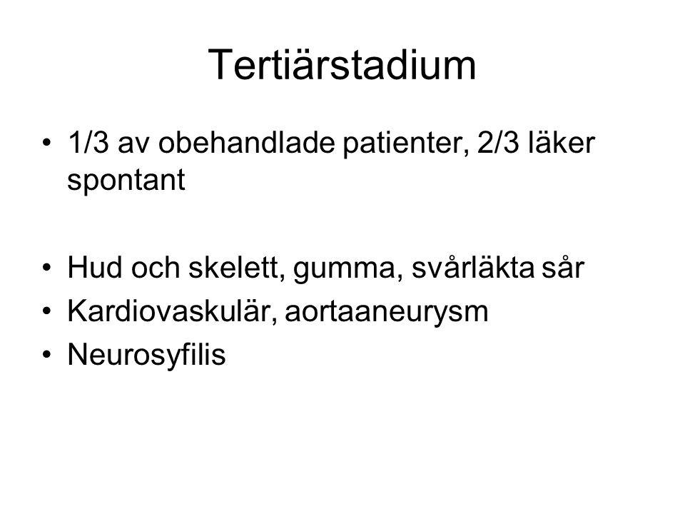 Tertiärstadium 1/3 av obehandlade patienter, 2/3 läker spontant