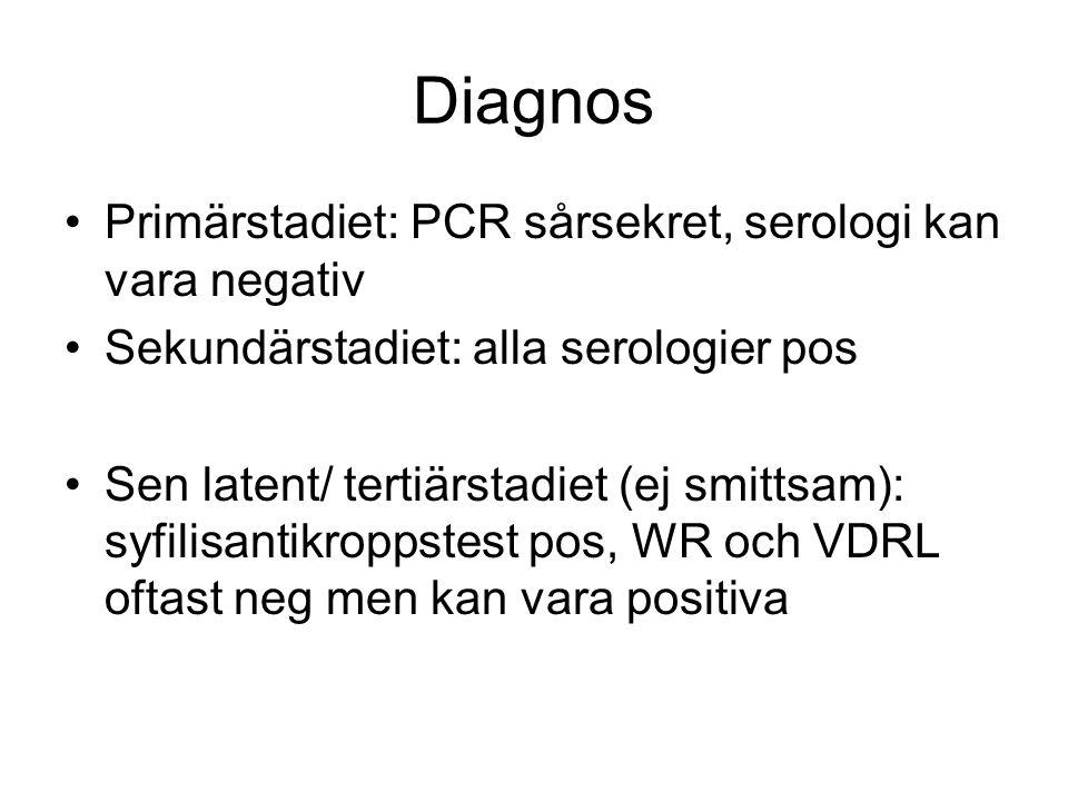 Diagnos Primärstadiet: PCR sårsekret, serologi kan vara negativ