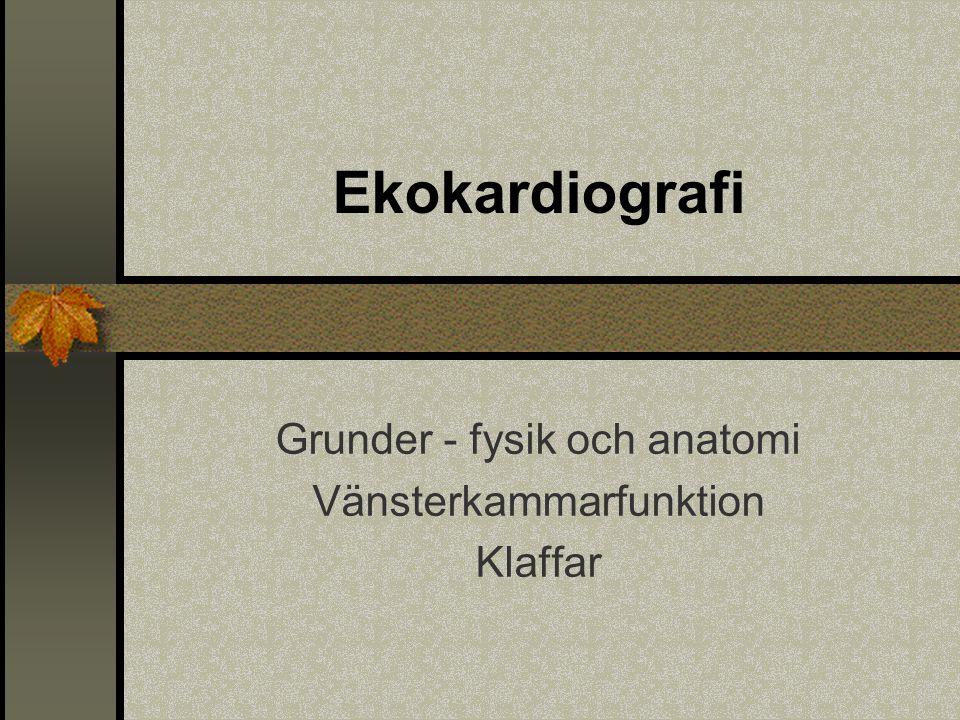 Grunder - fysik och anatomi Vänsterkammarfunktion Klaffar