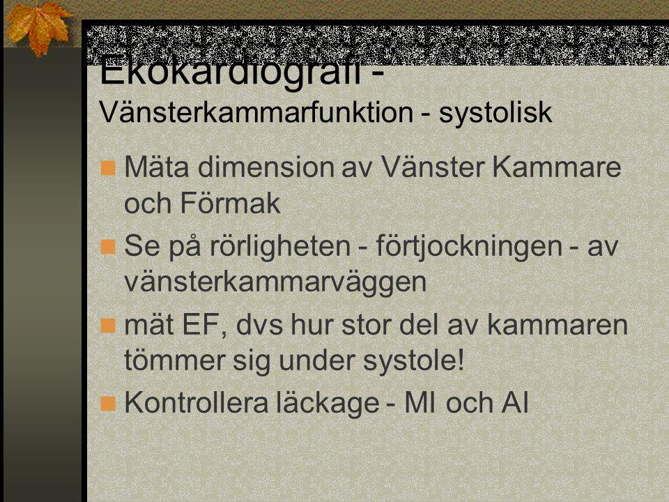 Ekokardiografi - Vänsterkammarfunktion - systolisk