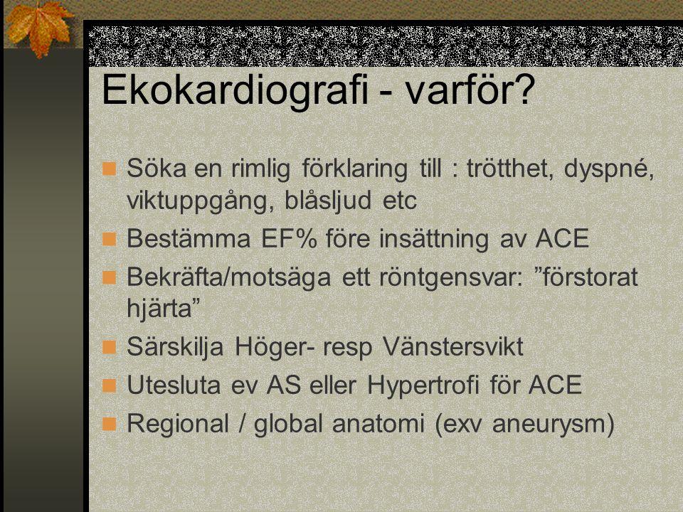 Ekokardiografi - varför
