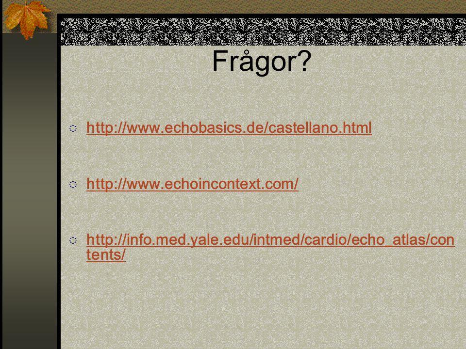 Frågor http://www.echobasics.de/castellano.html