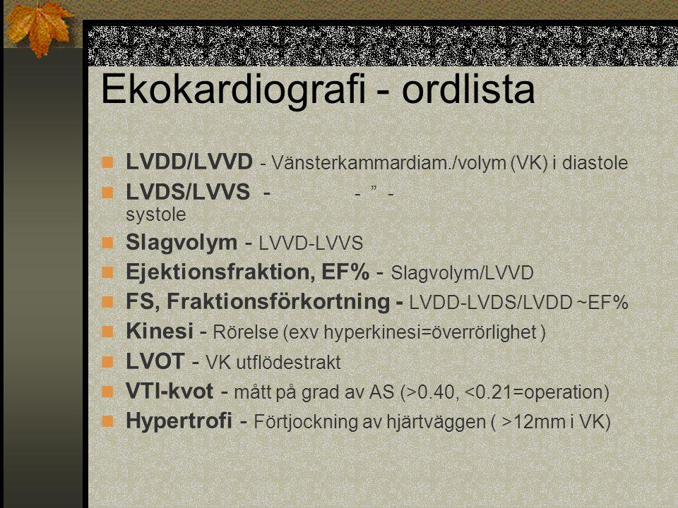 Ekokardiografi - ordlista