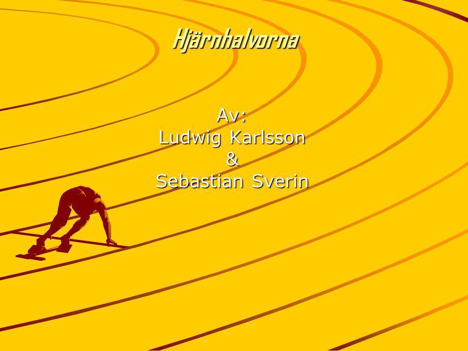 Av: Ludwig Karlsson & Sebastian Sverin