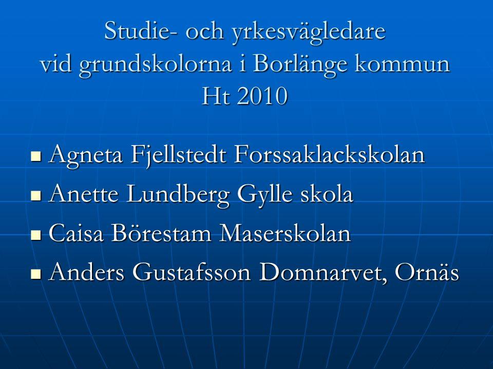 Studie- och yrkesvägledare vid grundskolorna i Borlänge kommun Ht 2010