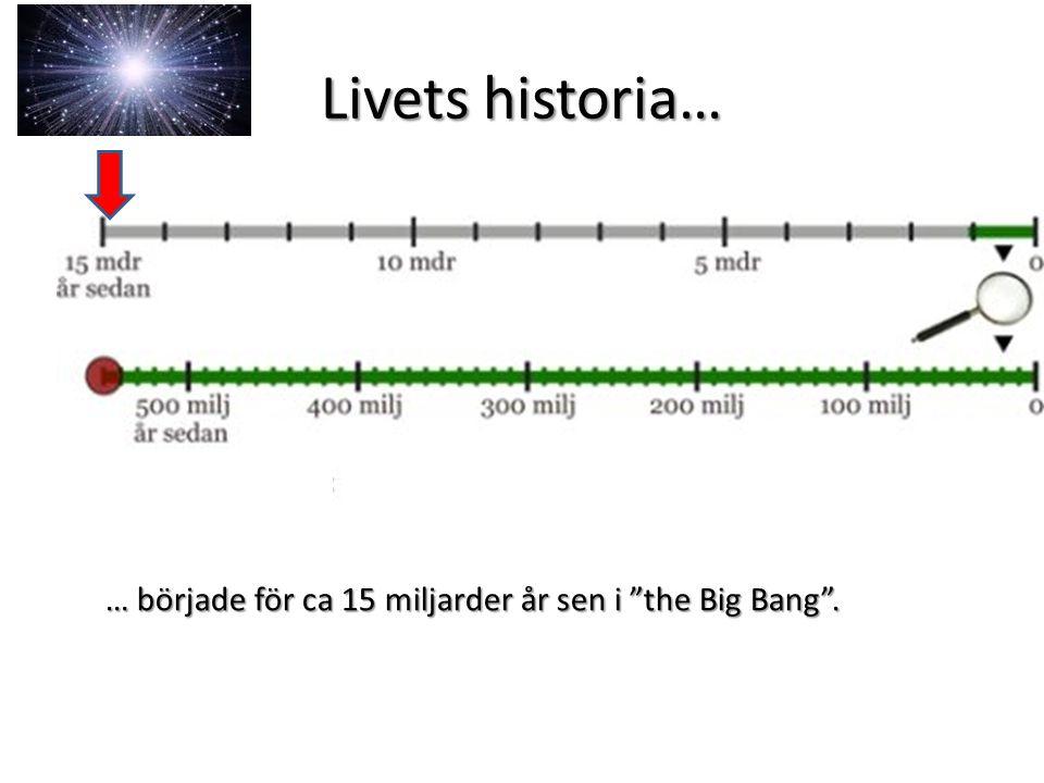 Livets historia… … började för ca 15 miljarder år sen i the Big Bang .