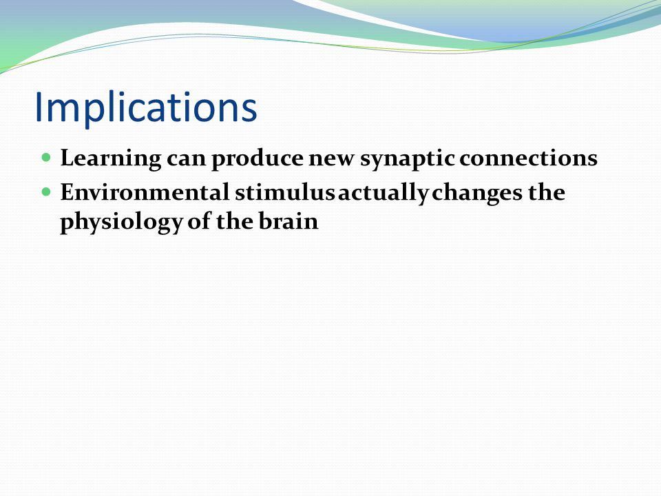 Implications Learning can produce new synaptic connections