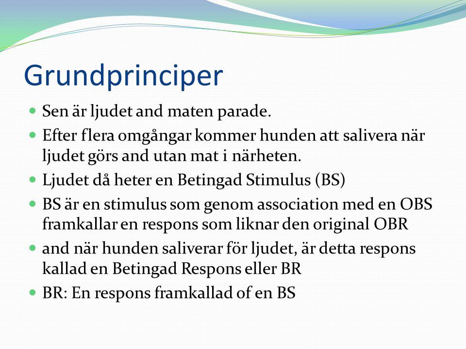 Grundprinciper Sen är ljudet and maten parade.