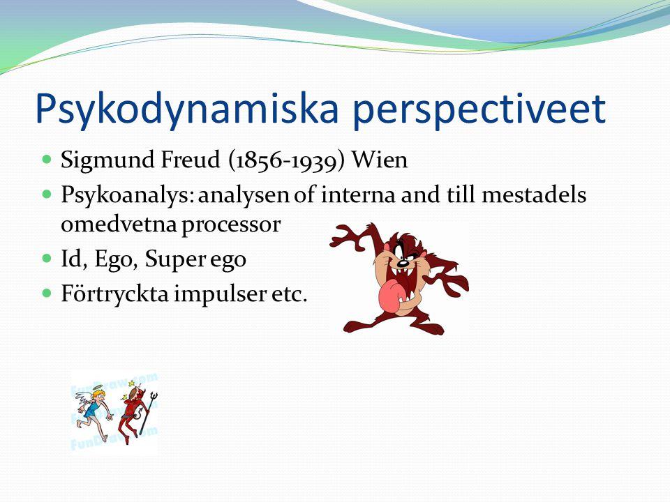 Psykodynamiska perspectiveet